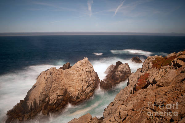 Wall Art - Photograph - Point Lobos Number One by Catherine Lau