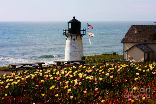 Photograph - Point Montara Lighthouse Vista by Carol Groenen