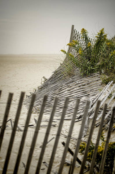 Photograph - Point Pleasant Beach by Heather Applegate