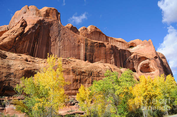 Spider Rock Photograph - Poison Spider Mesa In The Fall by Gary Whitton