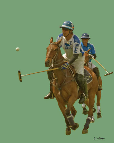 Photograph - Polo 7 by Larry Linton