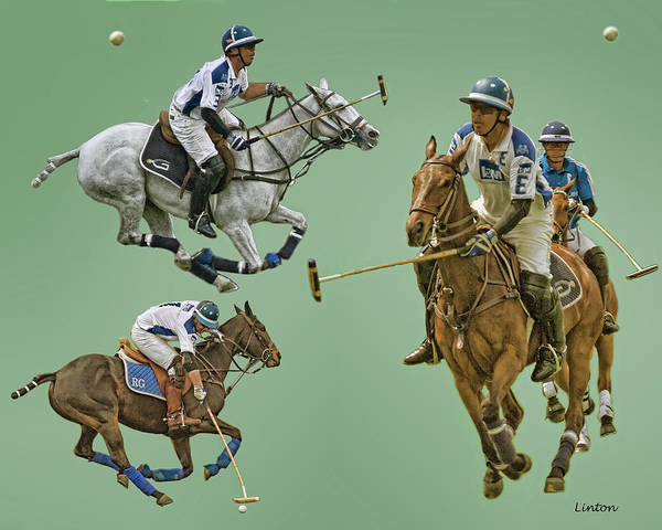 Photograph - Polo Montage 3 by Larry Linton