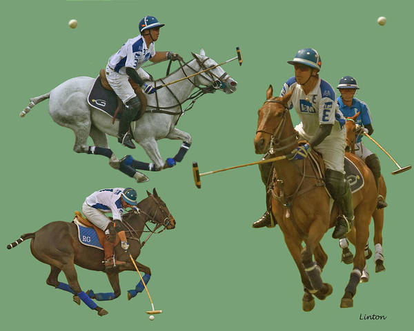 Photograph - Polo Montage by Larry Linton