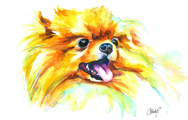 Pomeranian Painting - Pomeranian Fire by Christy Freeman Stark