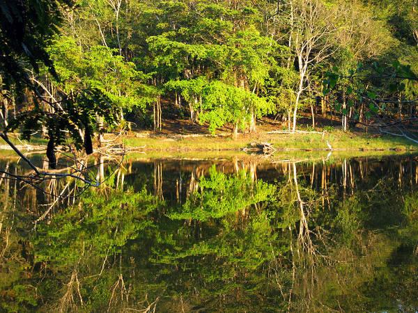 Photograph - Pond Reflection Guatemala by Kurt Van Wagner