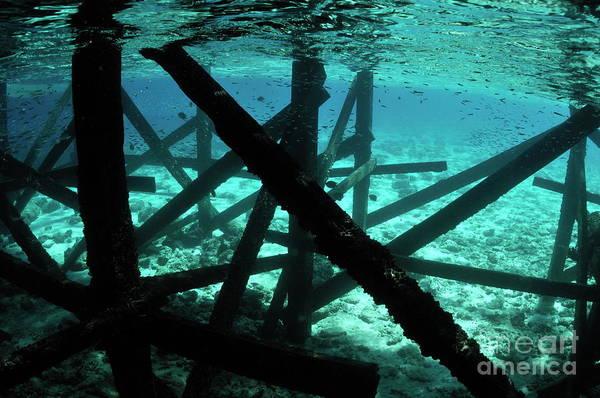 Wall Art - Photograph - Pontoon Underwater by Sami Sarkis