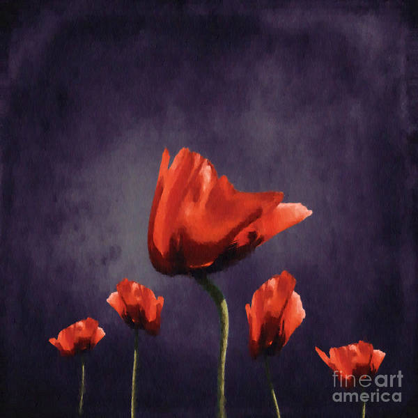 Flora Digital Art - Poppies Fun 02b by Variance Collections