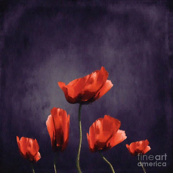 Flora Digital Art - Poppies Fun 03b by Variance Collections
