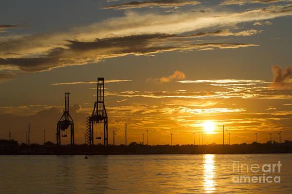 The Crane Photograph - Port Of Charleston Sunset IIi by Dustin K Ryan