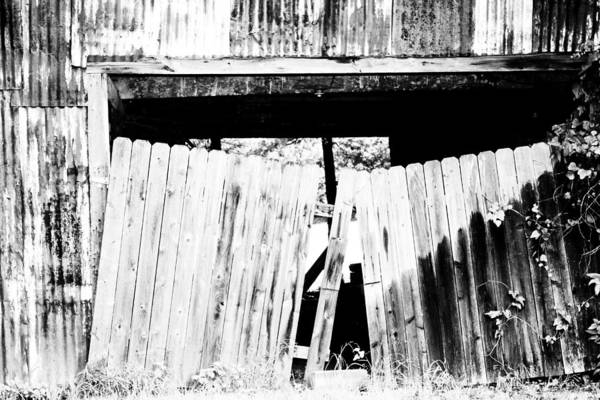 Photograph - Portal To The Past by Elizabeth Hart