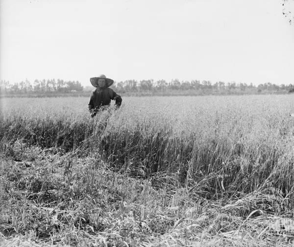 Kibbutz Photograph - Portrait Of A Jewish Settler In A Field by Everett