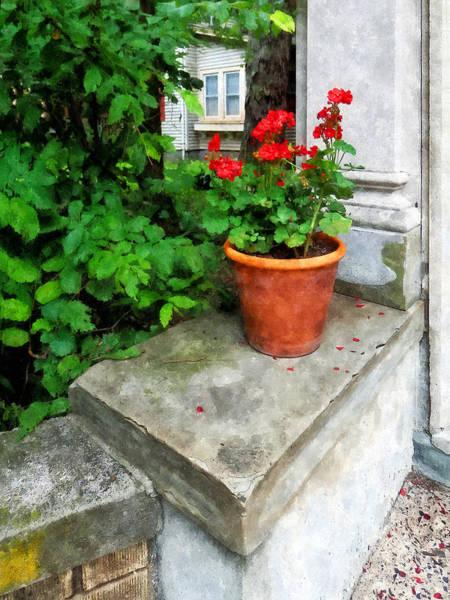 Photograph - Pot Of Geraniums On Stoop by Susan Savad