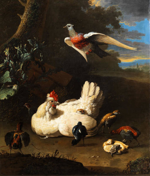 Chick Painting - Poultry by Melchior de Hondecoeter
