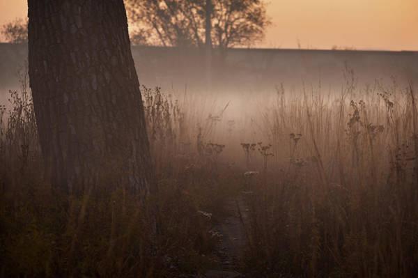 Wall Art - Photograph - Prairie Pre Dawn by Steve Gadomski