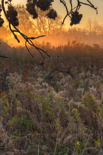 Wall Art - Photograph - Prairie Sunrise by Steve Gadomski