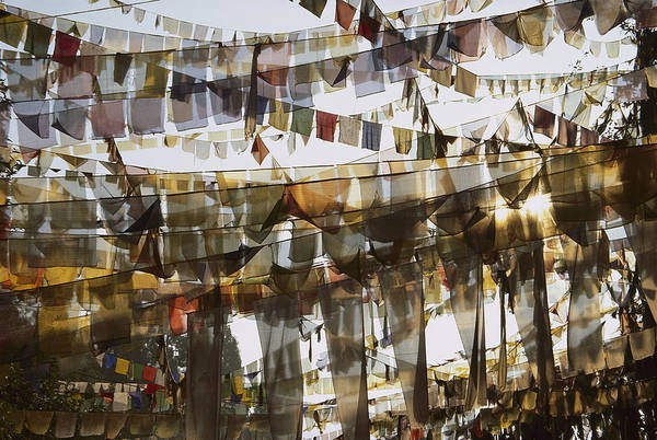 Photograph - Prayer Flags At Dawn, Ganesh Top by Colin Monteath