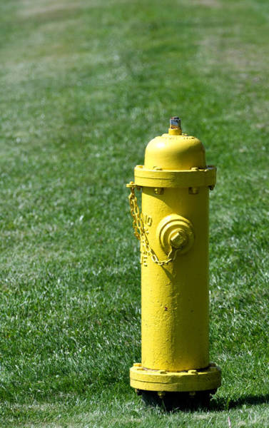 Water Hydrant Photograph - Prevention. Yellow Fire Hydrant. by Fernando Barozza