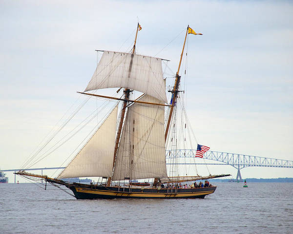 Photograph - Pride Of Baltimore II In Front Of The Harbor Bridge by Mark Dodd