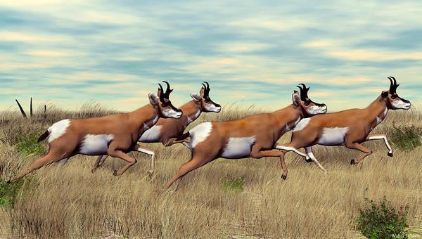 Sportsman Digital Art - Pronghorn by Walter Colvin