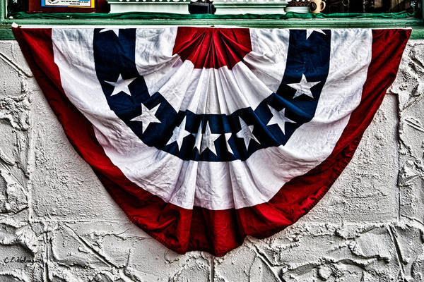 Photograph - Proud Colors by Christopher Holmes