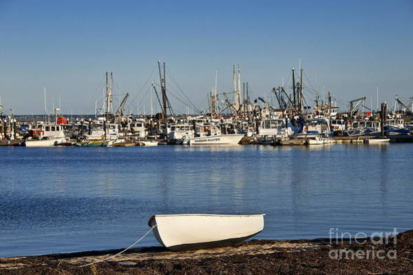 Provincetown Harbor Photograph - Provincetown Harbor by John Greim