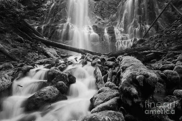 Wall Art - Photograph - Proxy Falls by Keith Kapple