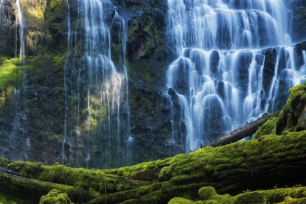 Central Oregon Photograph - Proxy Falls by Mark Kiver