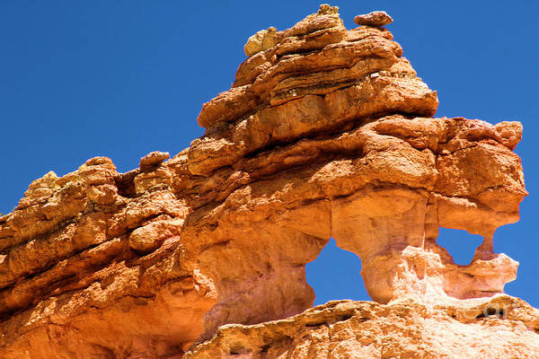 Photograph - Puff The Canyon Dragon by Adam Jewell