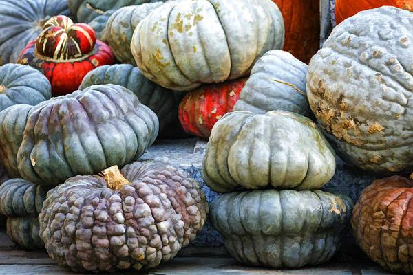Photograph - Pumpkin Pile by Joan Carroll