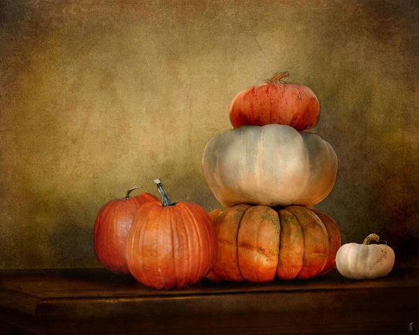 Photograph - Pumpkins by Jai Johnson