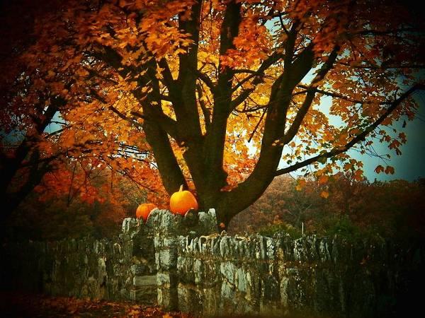 Wall Art - Photograph - Pumpkins On The Wall by Joyce Kimble Smith