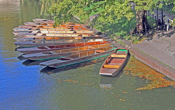 Photograph - Punts In Cambridge by Tony Murtagh