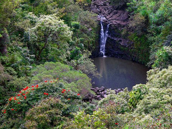 Photograph - Puohokamoa Falls by Lynn Bauer