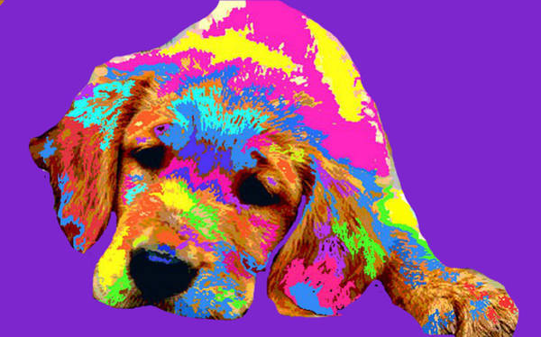 Golden Retriever Digital Art - Puppy  by Chandler  Douglas