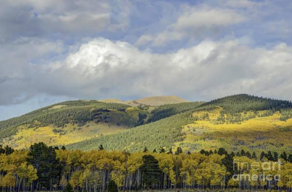 Photograph - Purely Colorado by David Waldrop