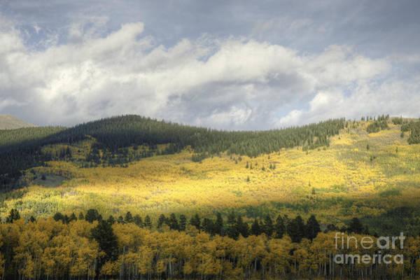 Photograph - Purely Colorado II by David Waldrop