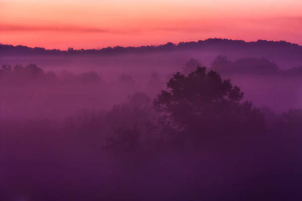 Purple Haze Photograph - Purple Dawn by Matt  Trimble
