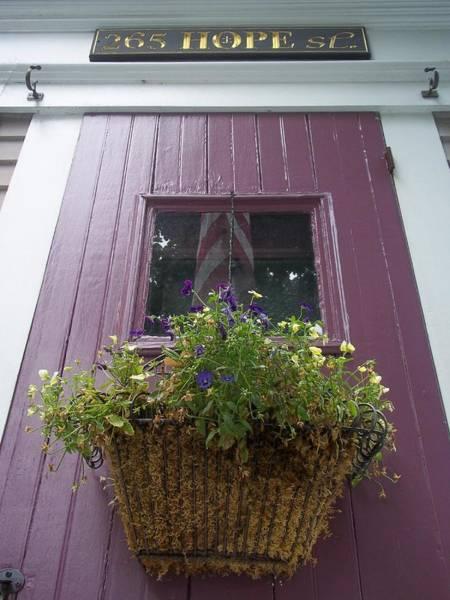 Photograph - Purple Door by Cynthia Amaral