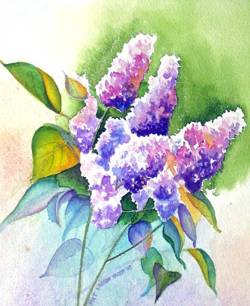Wall Art - Painting - Purple Lilacs by Pat Yager