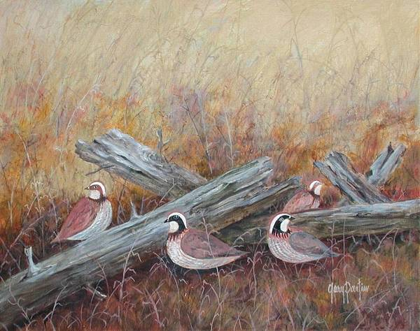 Painting - Quail In The Grass by Gary Partin