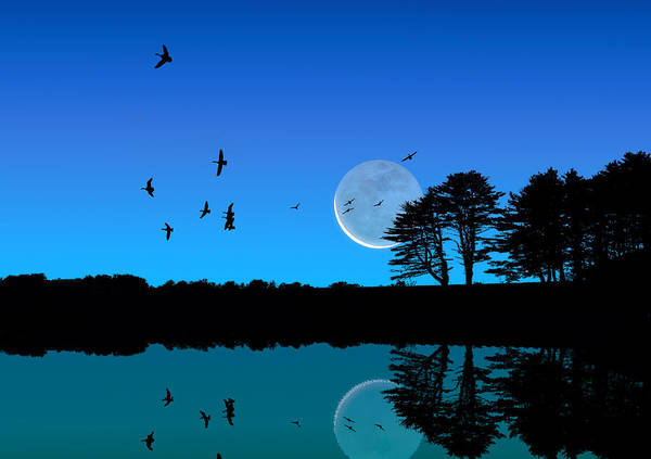 Photograph - Quiet Moonrise by Larry Landolfi