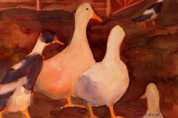 Wall Art - Painting - Racing Ducks by Cheryl Whitehall