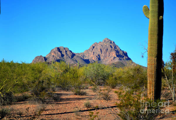 Photograph - Raggedy Top Mountain II by Donna Greene