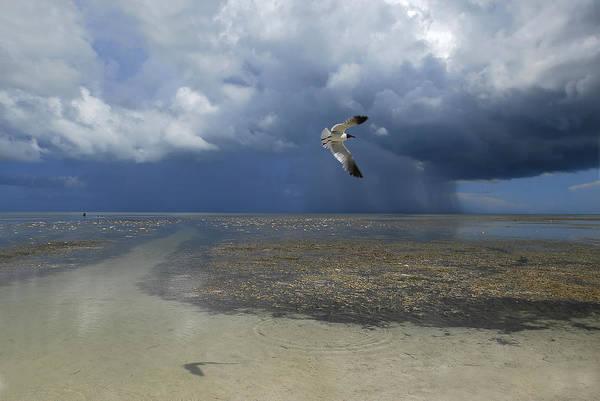 Bahia Honda Photograph - Rain Falls From A Huge Cloud by Raul Touzon