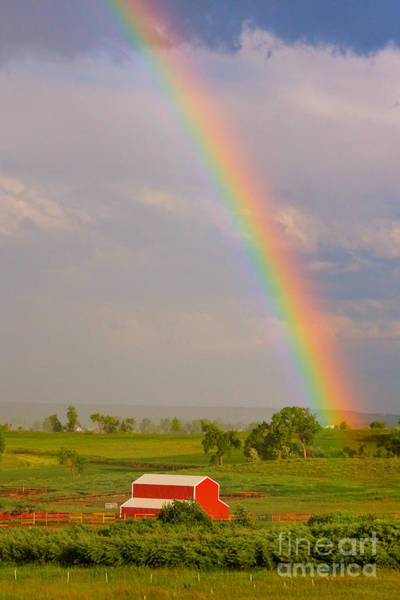 Photograph - Rainbow And Red Barn by James BO Insogna