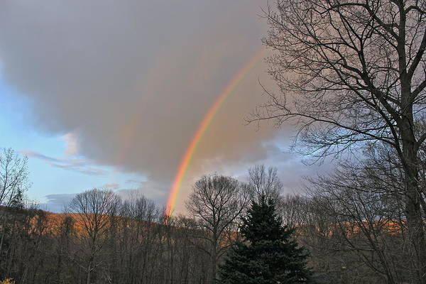 Photograph - Rainbow Brightest  2 by Cliff Spohn