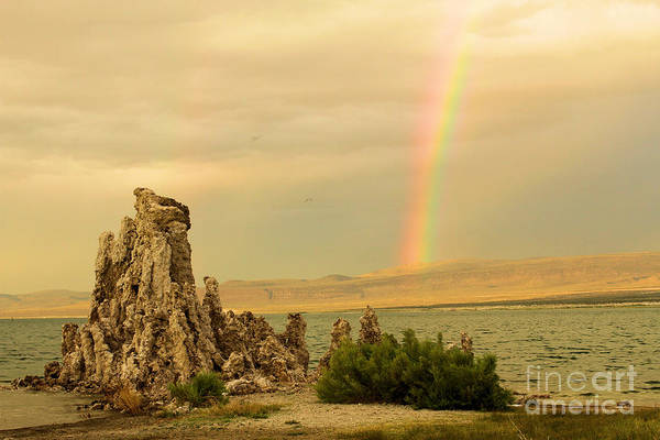 Photograph - Rainbow Over Mono Lake by Adam Jewell