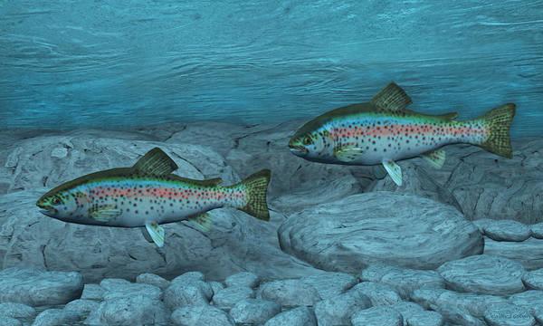 Sportsman Digital Art - Rainbow Trout by Walter Colvin