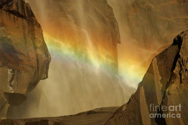 Photograph - Rainbow Vision by Adam Jewell