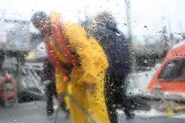 Photograph - Rainy by Kristin Elmquist